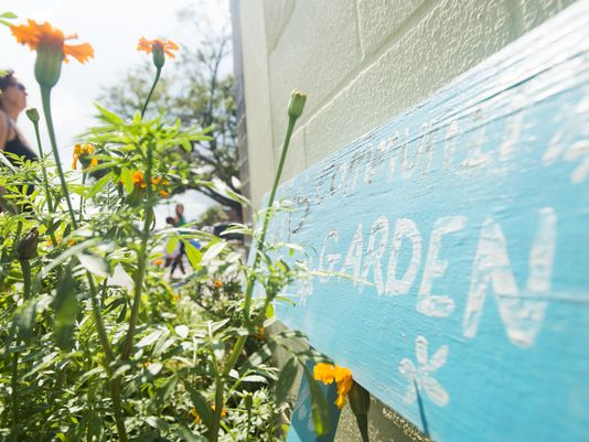 News: Community garden celebrates Earth Day with learning, vendors, games and music via Pensacola News Journal