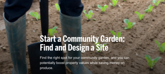 Start a Community Garden: Find and Design a Site via HouseLogic