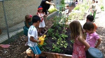 Ten Tips on Gardening with Kids via American Community Gardening Council