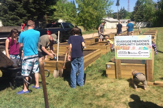 Riverside Meadows unveils new community garden via Red Deer Advocate