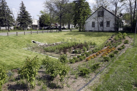 The Healing Potential of Turning Vacant Lots Green via CityLab