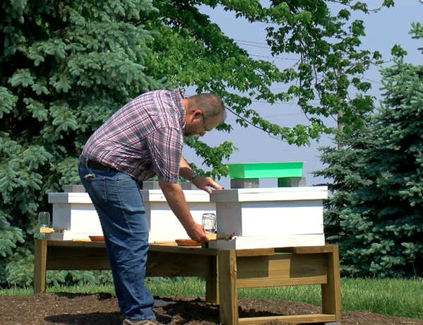 Bee hives established on Owens Community College Findlay campus via WTOL Toledo, Ohio