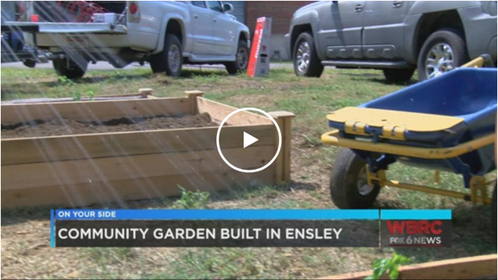 Youth group transforms empty lots to community garden in Ensley via WBRC Birmingham